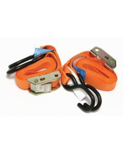 2 pce Cam Buckle Straps